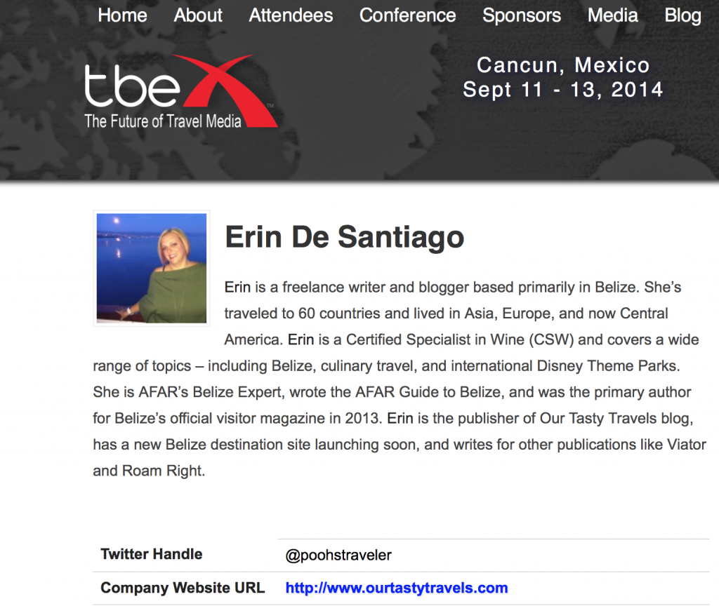 Erin De Santiago Speaker Profile TBEX Cancun